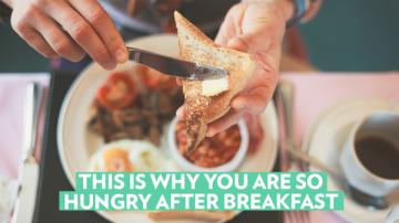 Вот почему вы так голодны вскоре после завтрака